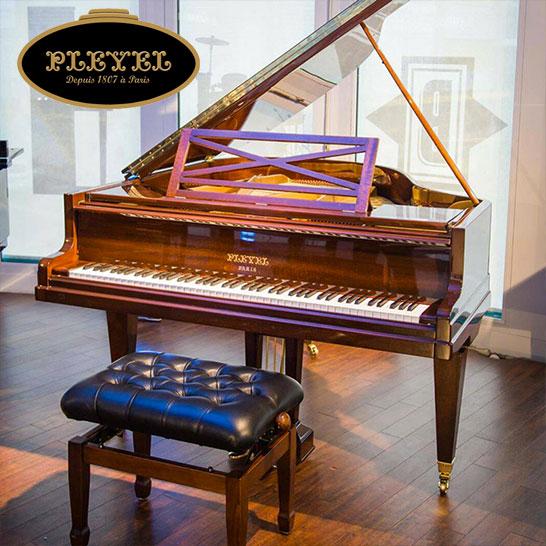 Pleyel 165 Noyer brillant