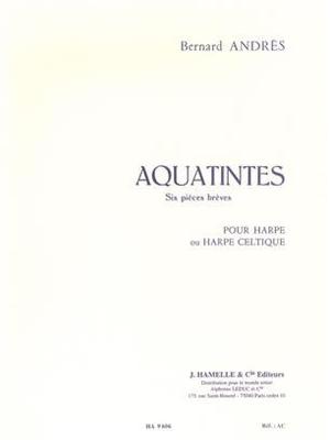 Aquatintes / Bernard Andres / Hamelle