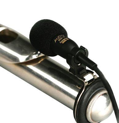 Audix ADX10 FL-P Flute