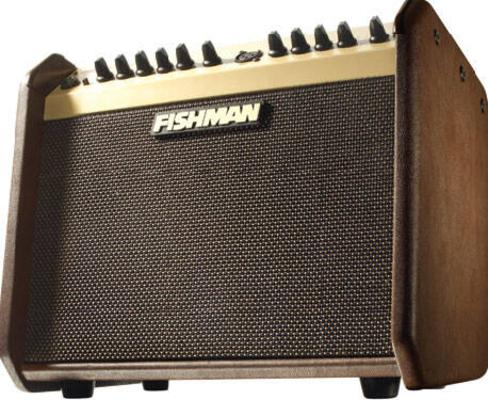 Fishman Loudbox Mini 60Watts