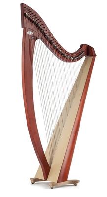 Salvi Titan 38 cordes acajou cordes en boyau synthétique Silkgut