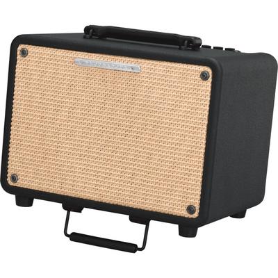Ibanez T30 Troubadour Acoustic Guitar Combo 30w