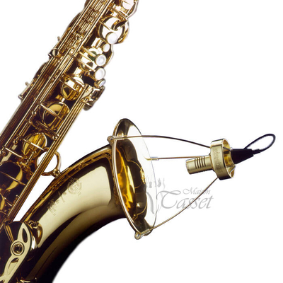 SD Systems Holland LCM 85 Wind + Brass instruments