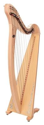 Salvi Donegal 34 cordes érable (Karbon/Stahl)