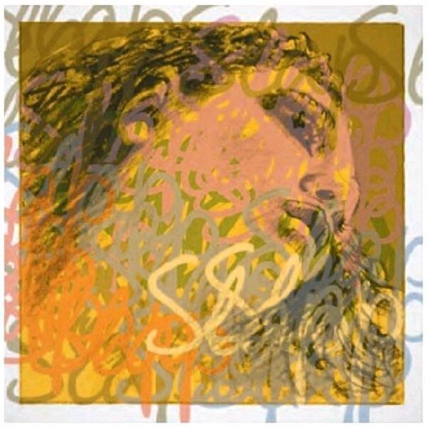 Pirastro EVAH PIRAZZI SLAP Rockabilly 2e RE-D pur boyau – moyen : photo 1
