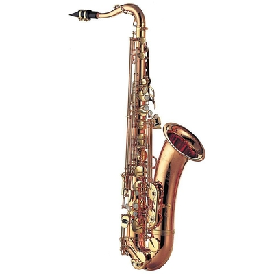Yanagisawa Saxophone ténor T-WO20 Bronze