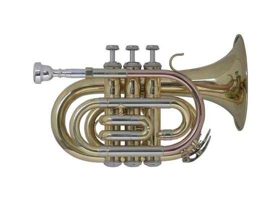 Bach SIB PT650 trompette de poche