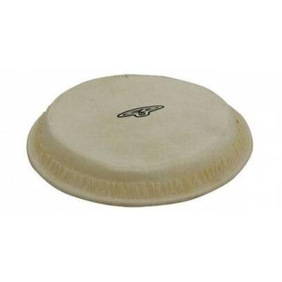 LP CP221B Head BG pour bongos traditionnels