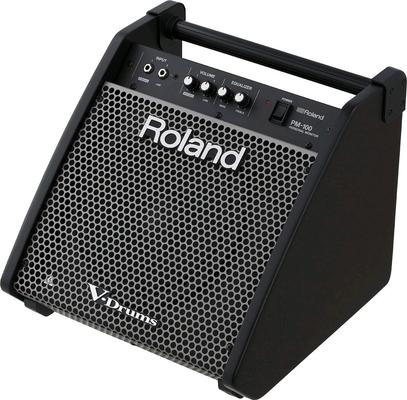 Roland PM-100 80 WATT PERSONAL MONITOR