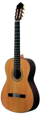 Esteve Guitare Classique Cedar Palissandre