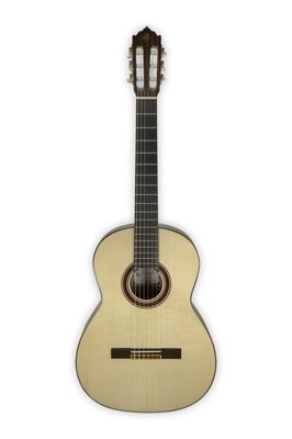 Prudencio Saez S1PS All solid Rosewood 280 + housse