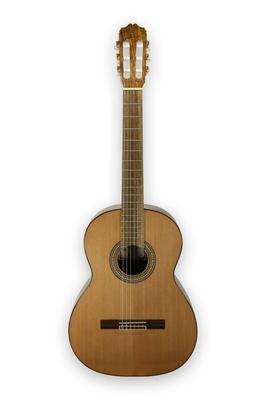 Prudencio Saez PS8 Guitar Classic Student 4/4 Mongoy