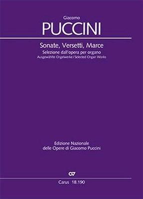 Sonate Versetti Marce Selected Organ Works Giacomo Puccini  Virgilio Bernardoni Orgel /  / Carus
