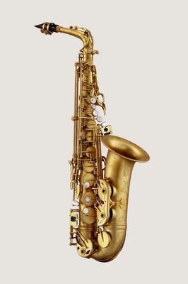 Antigua Saxophone Alto Model 25th Anniversary