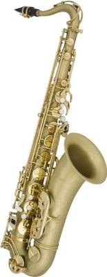 Antigua TS4240 Ténor Pro Classic Brass (Mat)