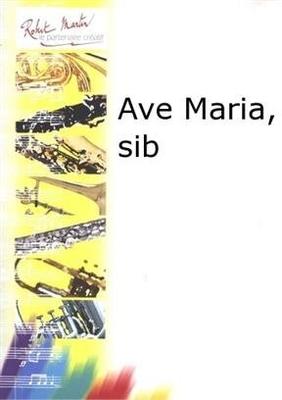 Ave Maria / Franz Schubert / Robert Martin