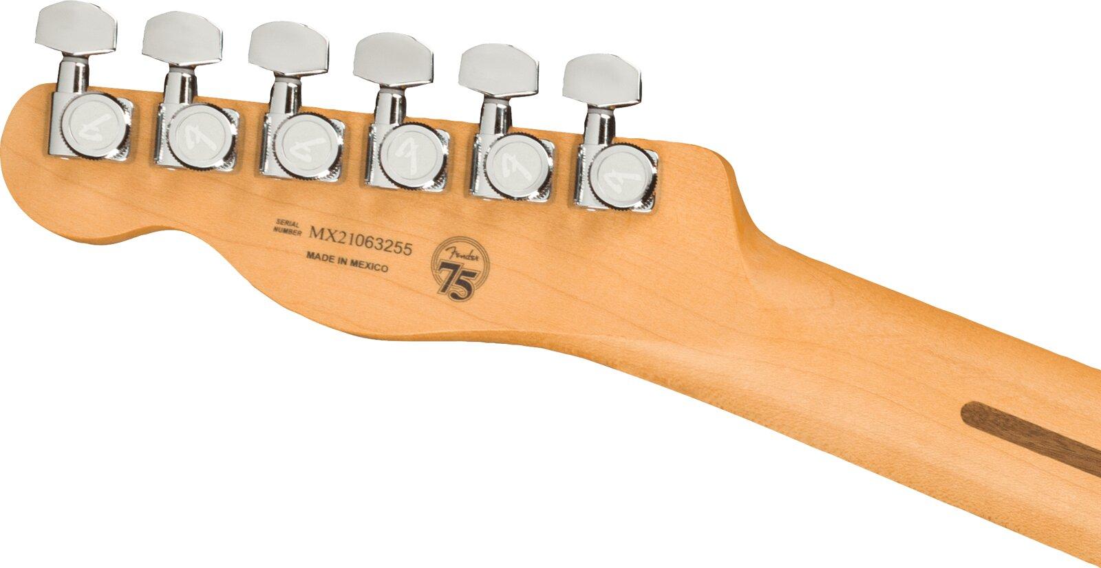 Fender Player Plus Nashville Telecaster, Pau Ferro Fingerboard, Opal Spark : photo 5