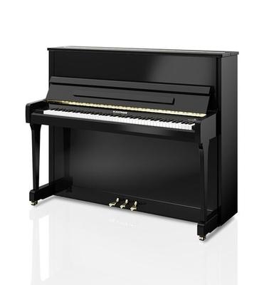 Hoffmann V-120 Noir brillant +  Système silencieux C. Bechstein Vario
