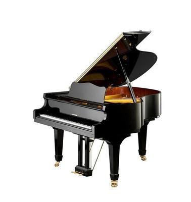 Hoffmann V-158 Noir brillant + Système silencieux C. Bechstein Vario